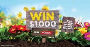 Yates – Win a $1,000 to spend in store