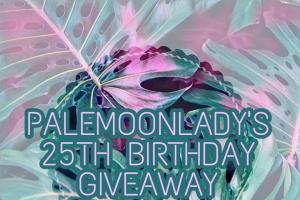 Pale Moon Lady – Ends on Thursday Nov 16th at 6pm Pst/9pm Est