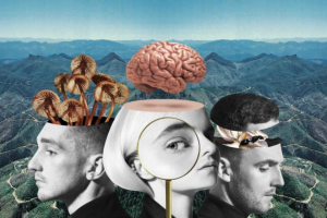 Win a $1000 Shopping Spree Thanks to Clean Bandit (prize valued at $3,000)
