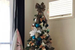 Brisbane 97.3 FM Show us your Christmas tree for a chance to – Win $1000 Cash for Christmas (prize valued at $1,000)