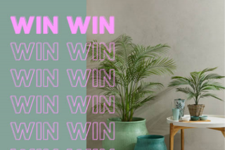 Hussh Sales – Win a 5-star Trip to Melbourne to Shop this Enormous 'first-ever' Homewares Warehouse Sale