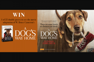 QBD Books – Win 1 of 25 Double Passes to See a Dog's Way Home