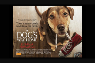 Smooth FM – Win a Family Pass to See a Dog's Way Home