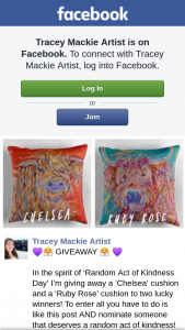 Tracey Mackie Artist – a 'chelsea' Cushion and a 'ruby Rose' Cushion to Two Lucky