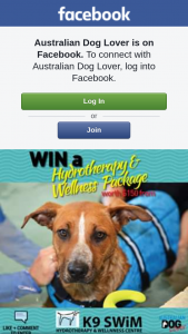 Australian Dog Lover – Win $150 Hydrotherapy & Wellness Package (prize valued at $150)