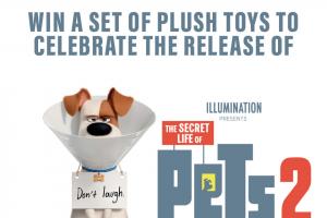 Dendy – Win a Set of Plush Toys