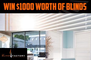 2GB – Win $1,000 worth of The Blind Factory