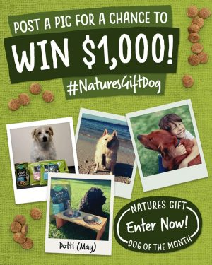 Nature's Gift – Dog of the Month – Win $1,000 and a gift hamper