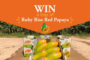 Ruby Rise Papaya – Win 1 of 2 trays of Ruby Rise Red Papayas (6kg tray each)