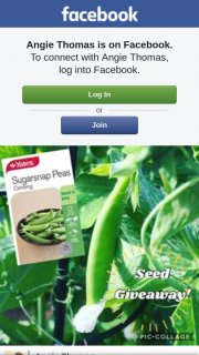Angie Thomas – Win One of 10 Packets of Yates Sugarsnap Climbing Peas