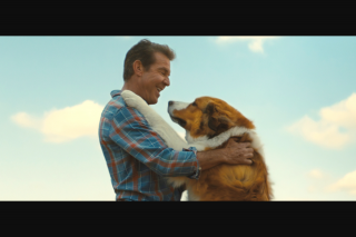 Screen Realm – Win One of Five Double Passes to See a Dog's Journey In Cinemas…