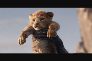 Weekend Edition Brisbane – Win a Car Pass to See The Lion King at Yatala Drive-In