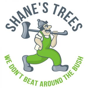 Shanes Trees – Win a $5,000 tree removal prize
