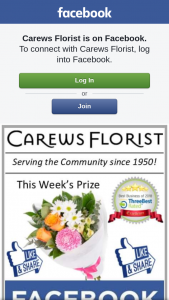 Carews Florist – These Beautiful Flowers