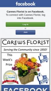 Carews Florist – These Lovely Flowers
