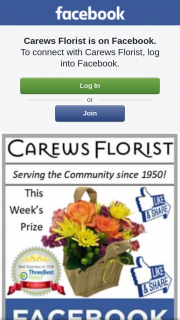 Carews Florist – These Lovely Flowers