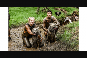 Community News – Win One of 10 Single Entry Tickets Into The Muddy Paws Challenge