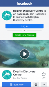 Dolphin Discovery Centre – an Annual Family Pass Into Our Interpretive Centre and a Hamper of Goodies From Our Beautiful Gift Shop (prize valued at $200)