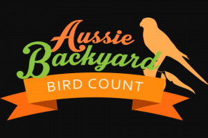 Aussie Backyard Bird Count – Win Binoculars and Other Prizes