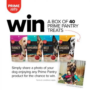 Prime Pantry – Win a box of 40 Prime Pantry treats