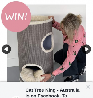 Cat Tree King Australia – Win this Tree (prize valued at $179)