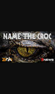 Ch 7 News Sydney – Win a Chance to Name a Crocodile and a Family Pass to Sydney Zoo