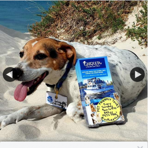 Chiquita Charters – Win a Tour for 2 People Plus Your Pets All You Need to Do Is