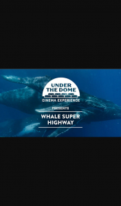 Perth Now – Win 1 of 5 Family Passes to Under The Dome (prize valued at $325)