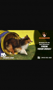 94.5 – Win One of Two Bootcamps From Allbreeds K9 Bootcamp (prize valued at $995)