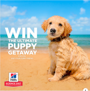 Hill's Pet Nutrition – Win the ultimate puppy getaway