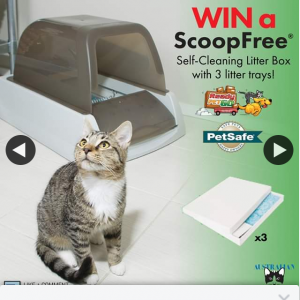 Australian Cat Lover – Win a Scoopfree Ultra Self Cleaning Litter Box (prize valued at $345)