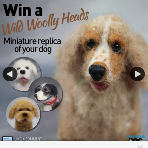 Australian Dog Lover – Win a Wild Woolly Heads Dog Miniature Replica for Mother's Day 2020 (valued at $350). (prize valued at $350)
