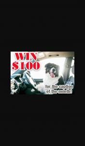 Reader's Digest – Win a Vicks Warm Steam Vaporizer Valued at $76.95 (prize valued at $100)