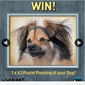 Australian Dog Lover – Win a Whozart Pastel Painting of Your Dog (prize valued at $350)