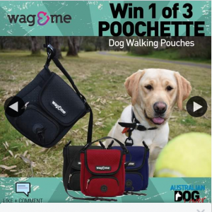 Australian Dog Lover – Win 1 of 3 Wag & Me Poochette (prize valued at $135)