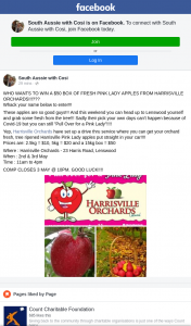 South Aussie with Cosi – Win a $50 Box of Fresh Pink Lady Apples From Harrisville Orchards?? (prize valued at $50)