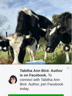 Tabitha Ann Bird Author – Win Aussie Author Mayalinnellwrites Has a Brand New Rural Romance Titled Bottle Brush Creek Coming Out this June