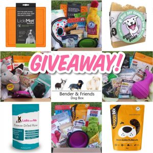 Bender & Friends Dog Box – Win a prize pack
