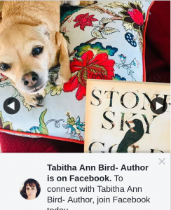 Tabitha Ann Bird Author – Win this Week I Have a Copy of The Recently Released Stone Sky Gold Mountain By Aussie Author Mirandi Stanton Pen Name Mirandi Riwoe