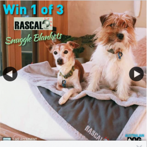 Australian Dog lover – Win One of Five Rascals Pets Snuggle Blankets to Keep Your Dogs Cosy this Winter (prize valued at $144)