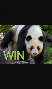 Burnside Village – Win 1 of 3 Family Passes to Adelaide Zoo