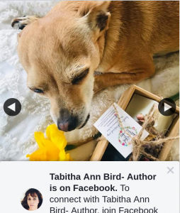 Tabitha Ann Bird Author – Win Four People Will Win One of These Gorgeous Handmade Soaps