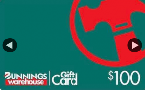 Anchor Ceilings – Win a $100 Bunnings Gift Voucher