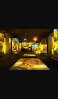 Aussie Theatre – Win Tickets to Van Gough Alive Exhibition Sydney