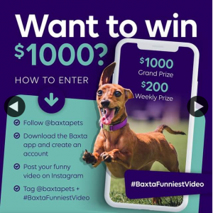 Baxta – Win $1000 Funniest Video of Your Pet