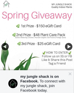My Jungle Shack – Win 1st Prize $150 Egift Card 2nd Plant Care Pack 3rd $25 Egift Card (prize valued at $223)