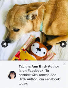 Tabitha Ann Bird Author – Win Okay I Thought We'd Have Some Fun