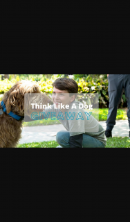 What's on 4 Kids – Win 1 of 5 Think Like a Dog DVD's