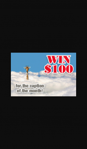 Reader's Digest – Win $100 Caption Photo