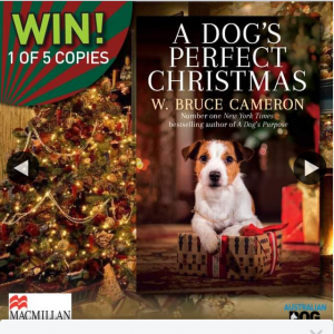 Australian Dog Lover – Win One of Five Copies of a Dog's Perfect Christmas (prize valued at $100)
